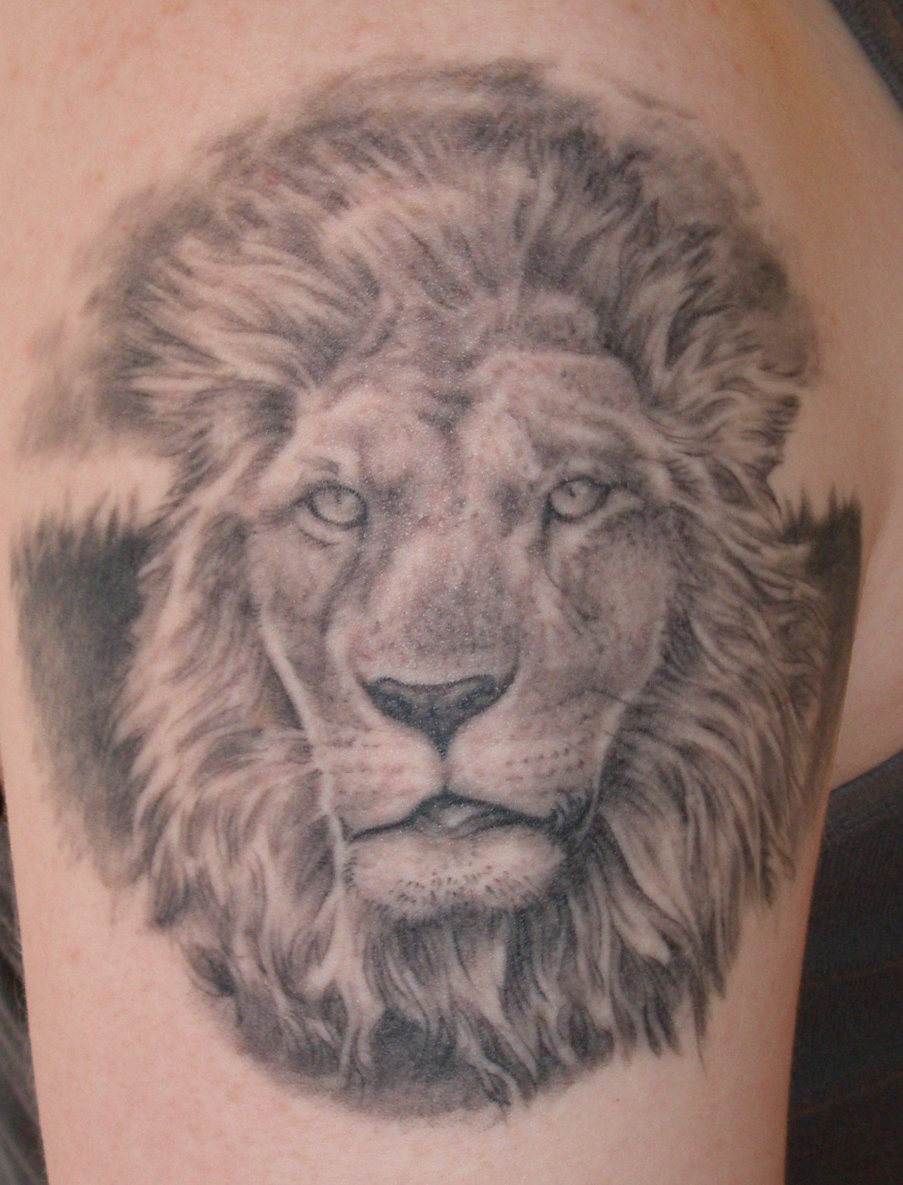 Thinking tattoo designs lion tattoo designs for Lion paw tattoo
